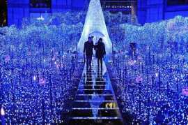 christmas-lights-amazing-christmas-lights-walking-in-the-park