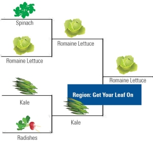 Veggie Bracket_get your leaf on