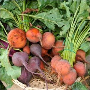 Photo courtesy of LaGrande Farmer's Market: http://www.flickr.com/photos/37884983@N03/